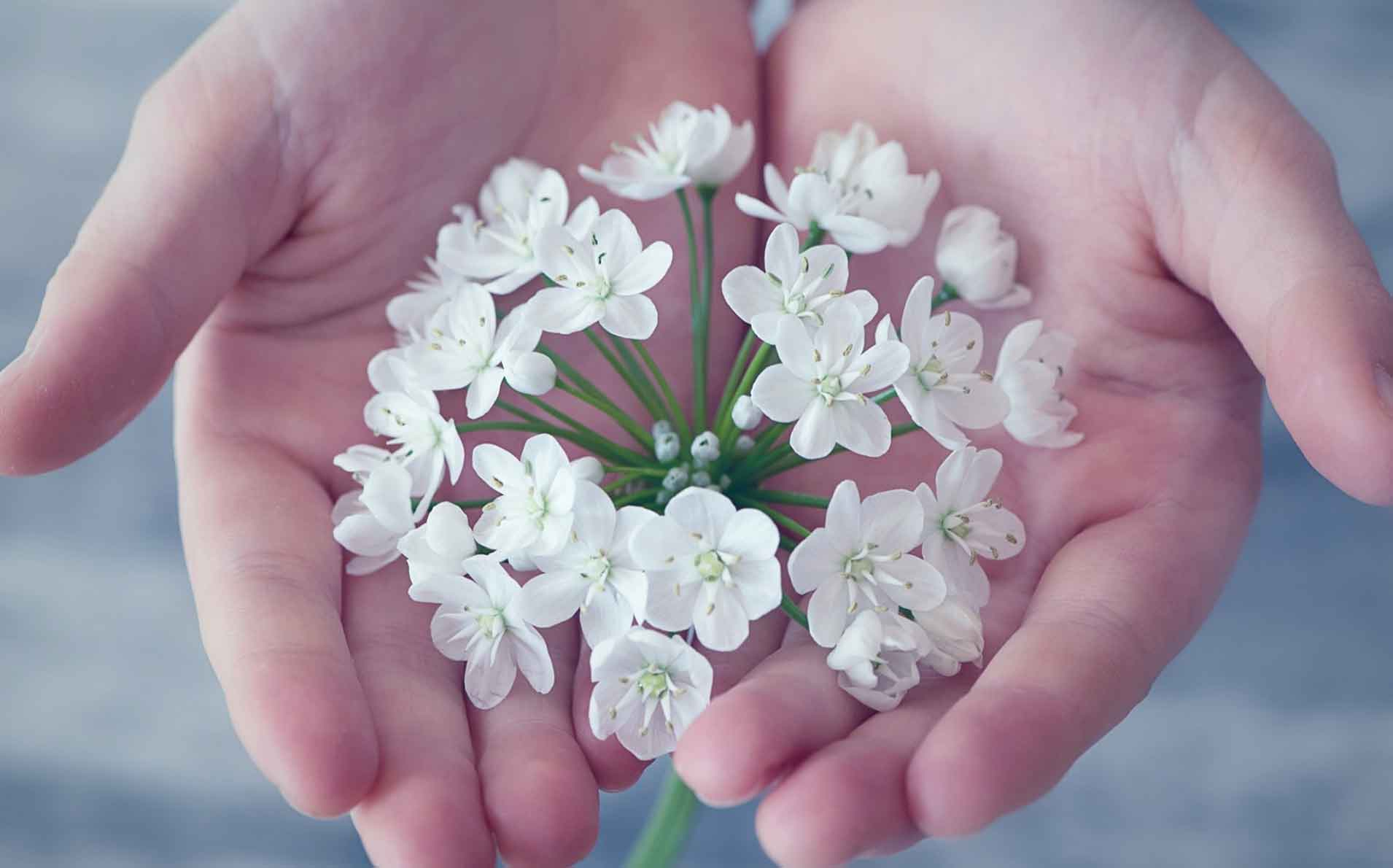 El Blog del Agradecimiento. Demos la Bienvenida a la Prosperidad Universal